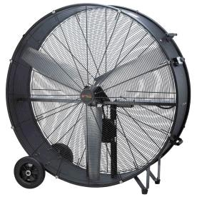 Where to find 42  2 SPEED FAN in Cleveland